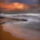 Turimetta Bronze 2 by Dianne English