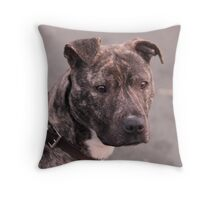 Mia : Staffordshire Bull Terrier Throw Pillow