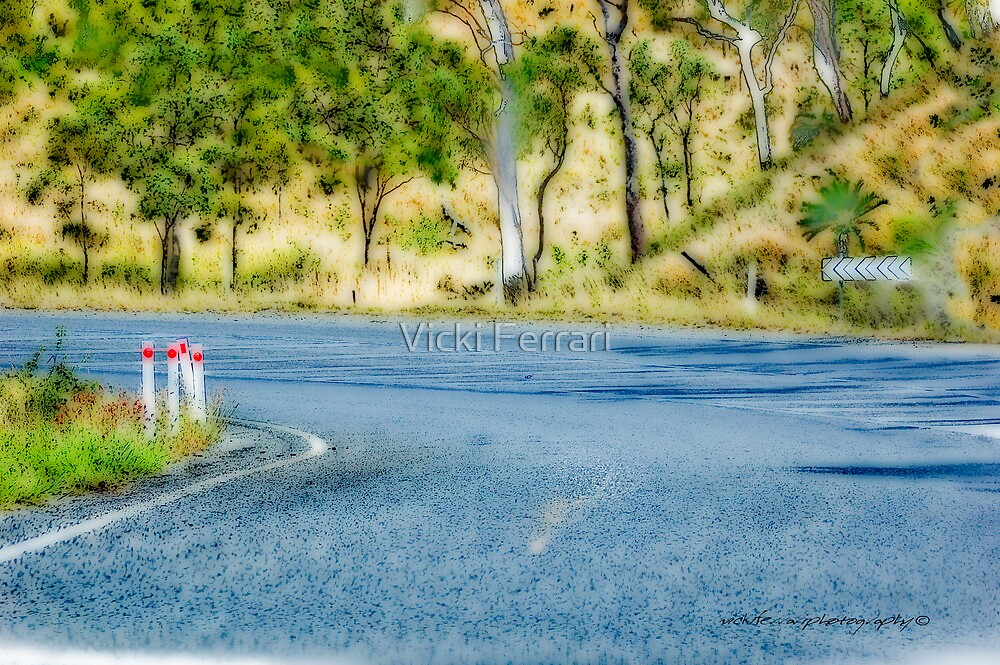 Just Another Bend In The Road © Vicki Ferrari Photography by Vicki Ferrari
