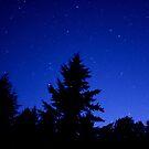 Cobalt Blue Sky by skreklow