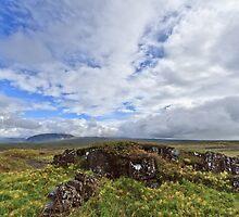 Þingvellir by Steen Nielsen
