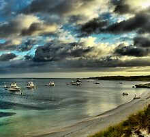 Rottnest Island by Austin Dean