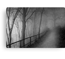 Dark way Canvas Print
