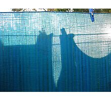 chance meeting on a washing line of a giant chicken robot and a lonely buffalo Photographic Print