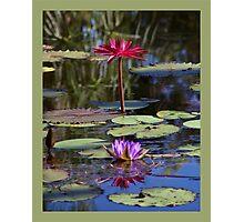 Jewel of the Pool Photographic Print