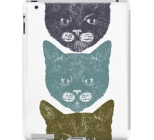 3 Kittens iPad Case/Skin