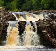 Low Force, Upper River Tees, England by Ian Alex Blease