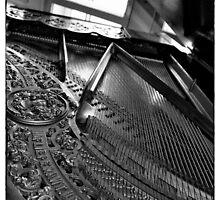 Viva la musica - two by trounoir