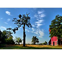 Old Red Barn Finley Refuge - USA - Photographic Print