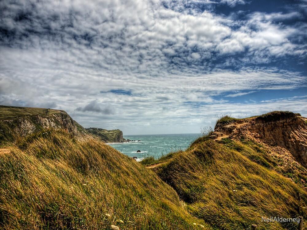 Dorset Coastline by NeilAlderney