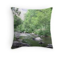 Oak Creek July 23, 2011 Throw Pillow