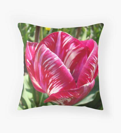 Bright Tulip Flower art prints Pink White Tulips Throw Pillow