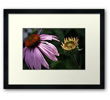 Age Difference Framed Print