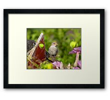 Sparrow and Flowers Framed Print