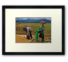 RICE WORKERS - BURMA Framed Print