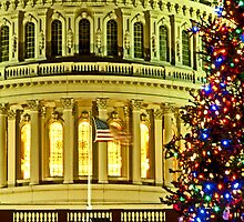 A Capitol Christmas by michael6076