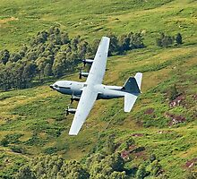 RAF Hercules by Stephen Kane