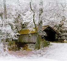 Covered Bridge Infrared by DaraD