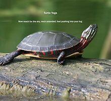 Turtle Yoga by skyoncloud9