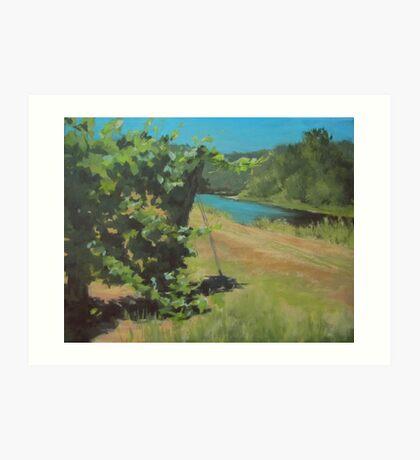 Vineyard on the River Art Print