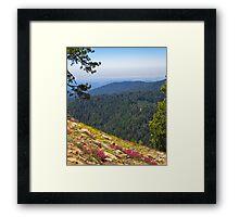 Fresno dome trail near North Fork Framed Print