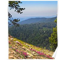 Fresno dome trail near North Fork Poster