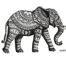 elephant by maarta