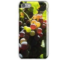 Grenache Grapes iPhone Case/Skin