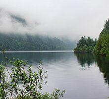Kennedy Lake, Vancouver Island, BC, Canada by Brenda Boisvert