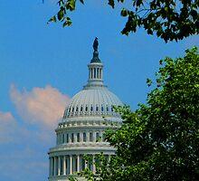 U. S. Capitol Building by michael6076