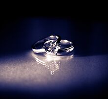 Wedded Bling by Sally Werner