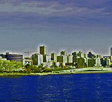 Seattle - a distant view by michael6076