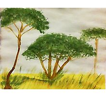 Savannah Series #2, watercolor Photographic Print