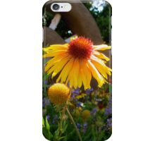 Country Daisy iPhone Case/Skin