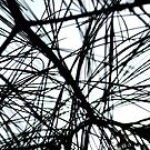 Pine Needles Abstract  by DearMsWildOne