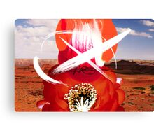 Red Star X Canvas Print