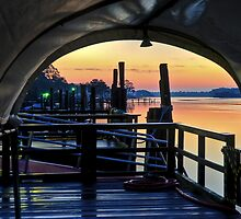 Canopy Dawn by Joe Jennelle
