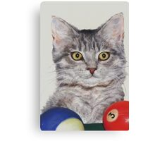 Little Pool Playing Cat Canvas Print