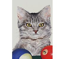 Little Pool Playing Cat Photographic Print