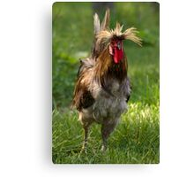 Punk Rock Rooster Canvas Print