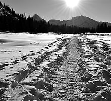 Kananaskis by Manar87