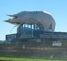 'THE BIG PRAWN! Great seafood at Fishermans Co-op N.S.W. by Rita Blom