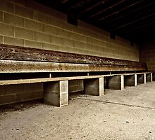 The Home Bench by AT-Photo