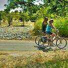 American River Bike Trail by Lenny La Rue, IPA