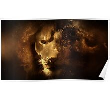 The Lion (Panthera leo) Poster