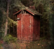 Mead Creek Outhouse by Megan Noble