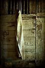 Remnant  by KBritt