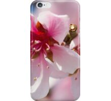 peach flower on tree iPhone Case/Skin