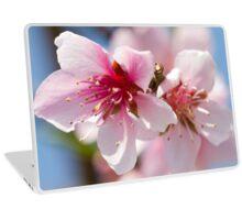 peach flower on tree Laptop Skin