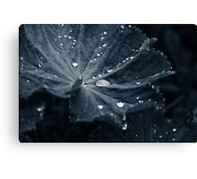 Pearls of Hydrogen and Oxygen Canvas Print